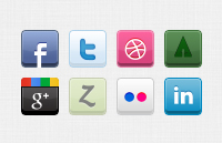 8 Social- Icons-banerplus.ir_